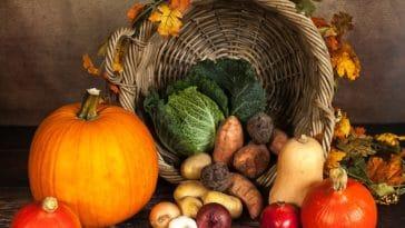 légumes automne panier -