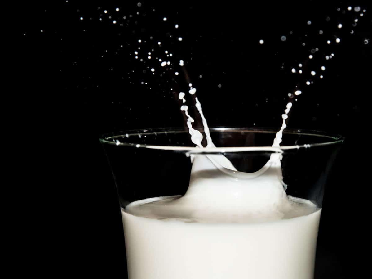 lait Pixabay