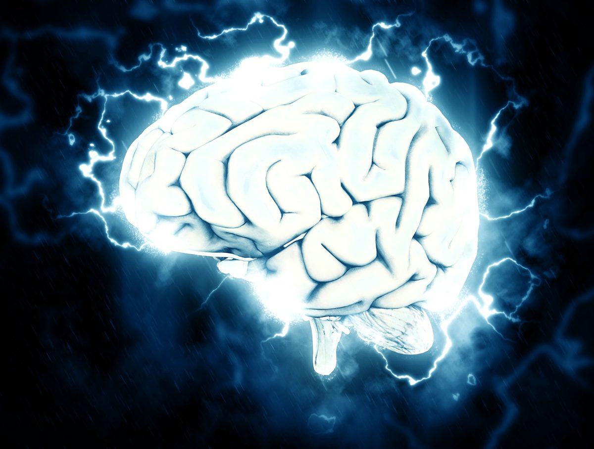 cerveau-pixabay