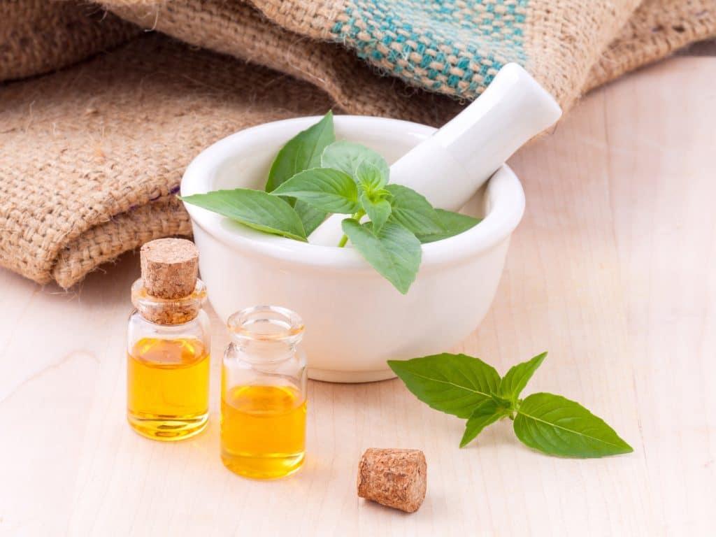 Ortie remède naturel cellulite Docteur Tamalou