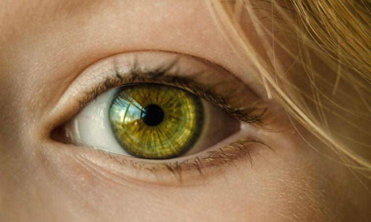 yeux oeil