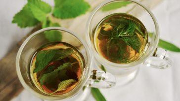 thé plantes