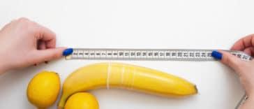 mesurer taille pénis sexe