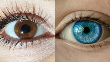 yeux bleus blancs