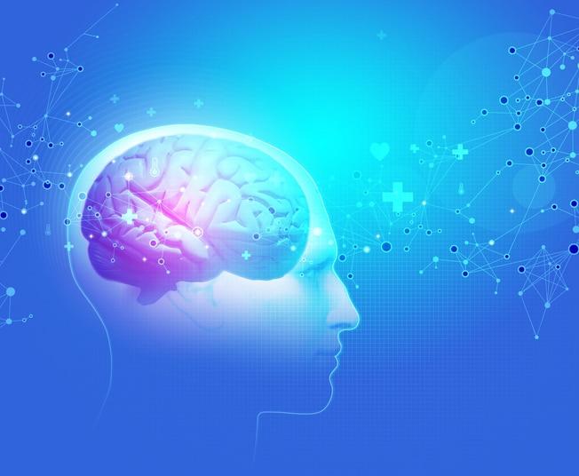 Sclérose en plaques cerveau