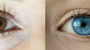 yeux couleurs