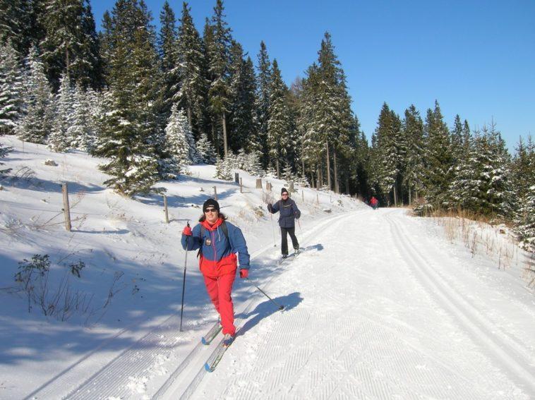 randonnée ski fond neige hiver froid