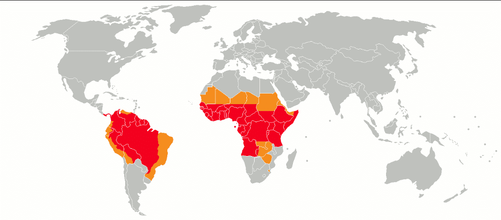 main countries affected by yellow fever