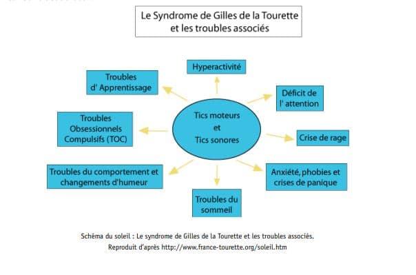 syndrome de la tourette schéma Docteur Tamalou