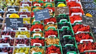 saisonnalité fruits et légumes