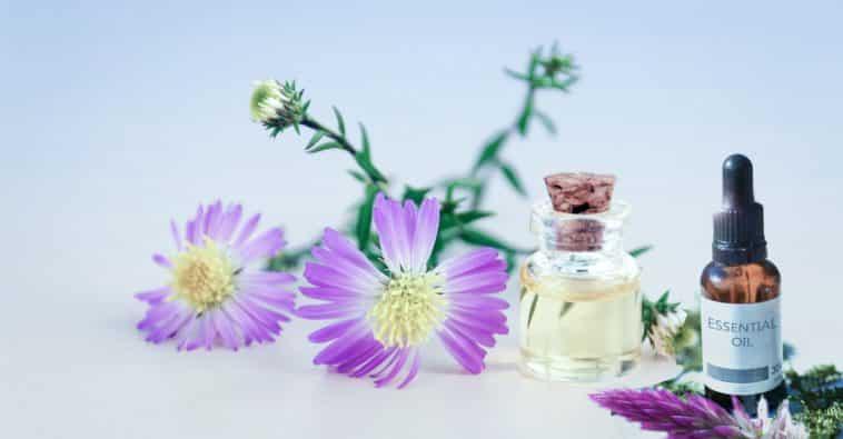 huile essetielle-Pixabay_mohamed_hassan