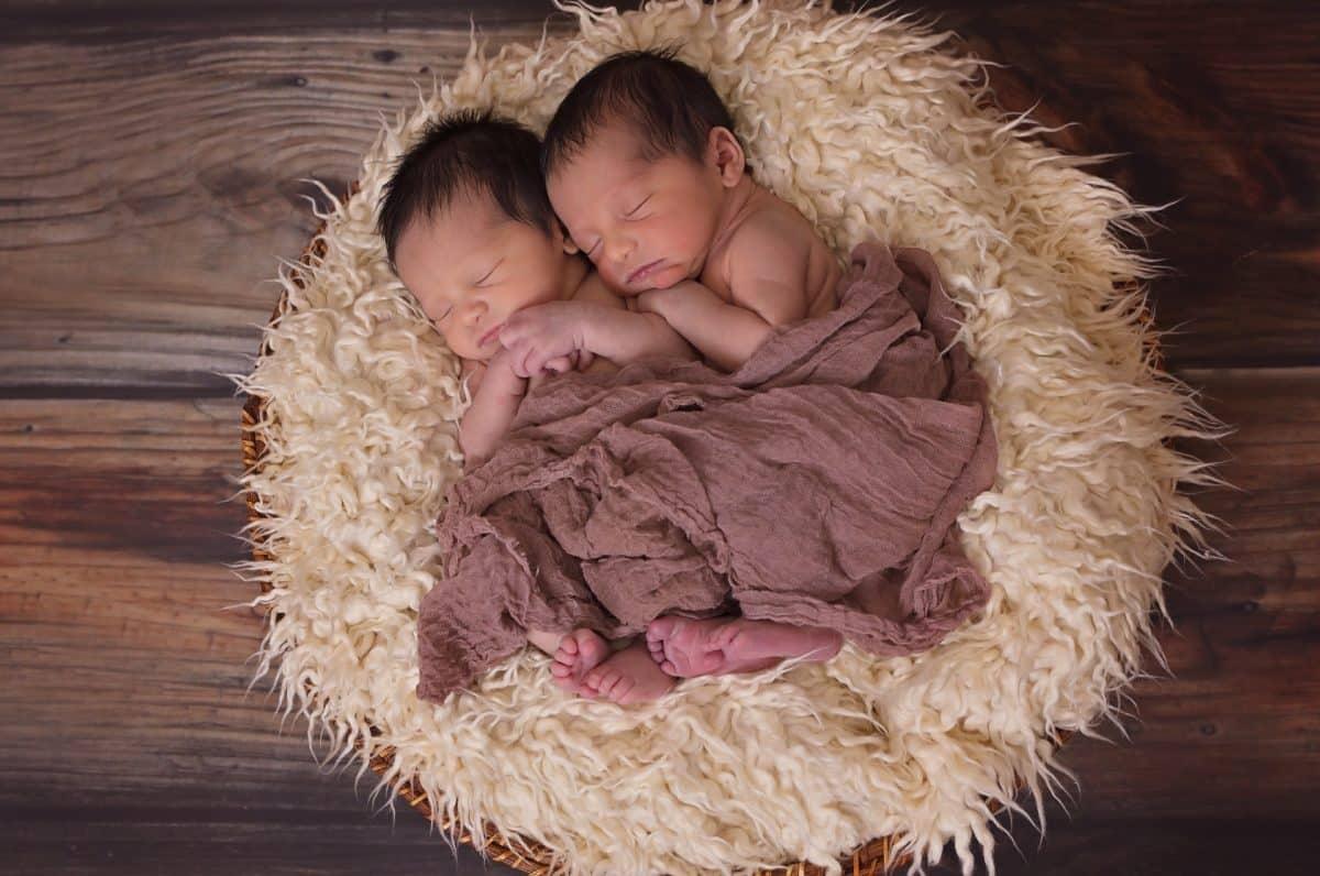 jumeaux 3194556 / Pixabay