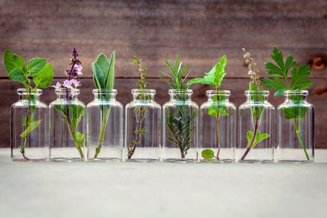 aromathérapie-huile-essentielle-herbes