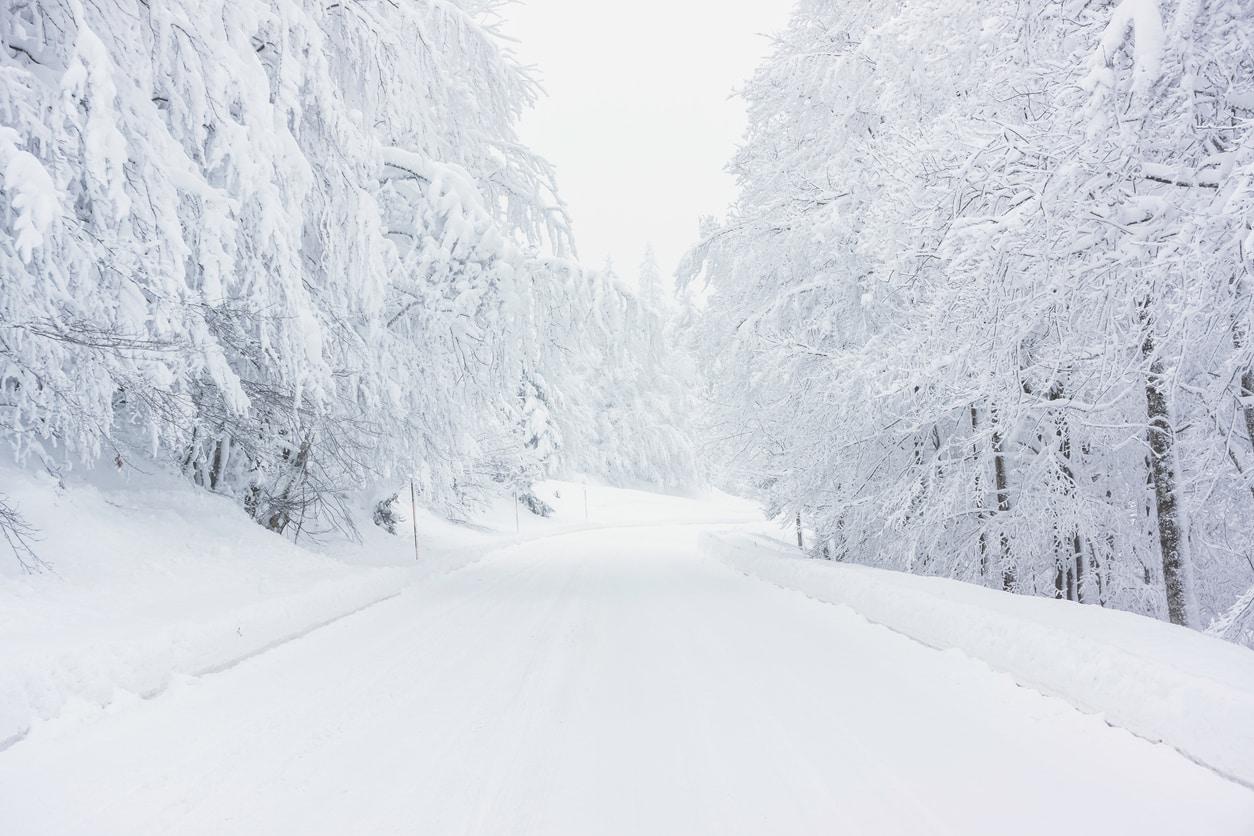 chemin-neige-nature-paysage