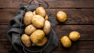 pomme-de-terre-patate