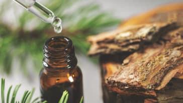 pin-huile-essentielle