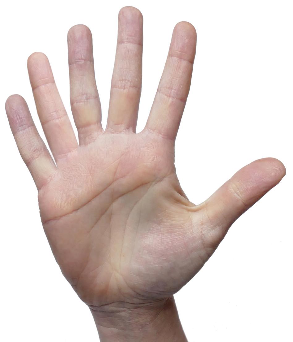 main-six-doigts