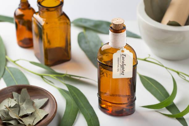 Eucalyptus essential oil wih leaves on white background. Organic aromatheraphy