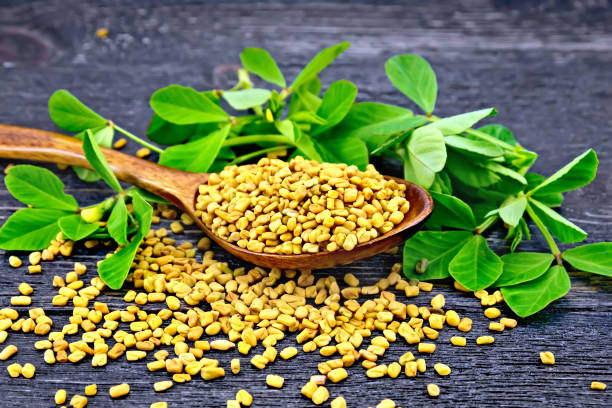 Fenugreek seeds in a spoon and on a table with green leaves against a black wooden board