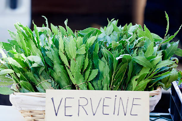 Bunches of Verveine, or Lemon Verbena leaves for sale at a French Market. The leaves can be used to flavour dishes in cooking, such as fish and poultry, in marinades, dressings, jams and desserts. It is also widely used to make herbal teas.