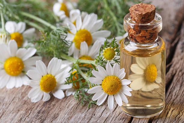 huile essentielle camomille romaine