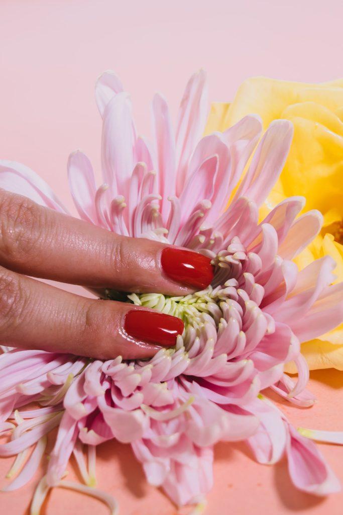 masturbation féminine illustrée avec une fleur